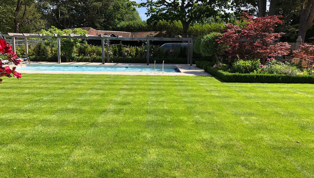 Lawn preparation and installation
